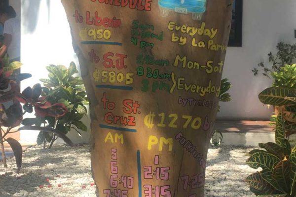 Playa Flamingo Bus Schedule Costa Rica